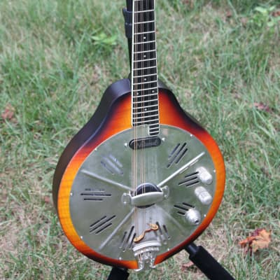 National RM1 Mandolin with Hot Plate pickup for sale
