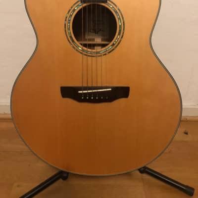 Revival RJ-300 Acoustic Guitar for sale