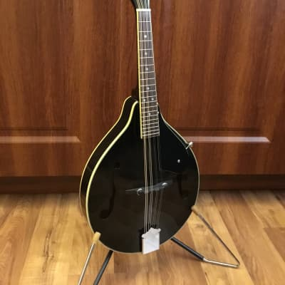 Ashbury Mandolin w/Case for sale