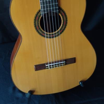 1964 Francisco Fernandez Brazilian Rosewood Classical Guitar