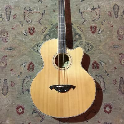 Freshman FA-1BN Electro-Acoustic Bass Guitar in Natural for sale