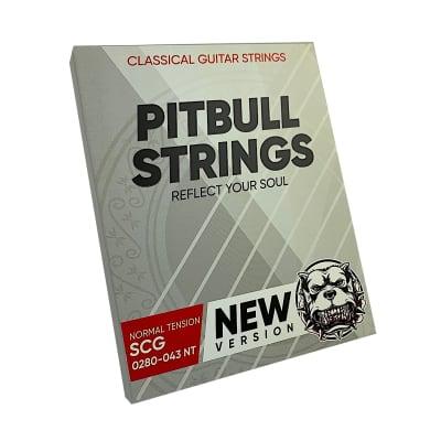 Premium Classical Guitar Strings - Pitbull Strings Silver Series - 0280-043 - SCG-NT