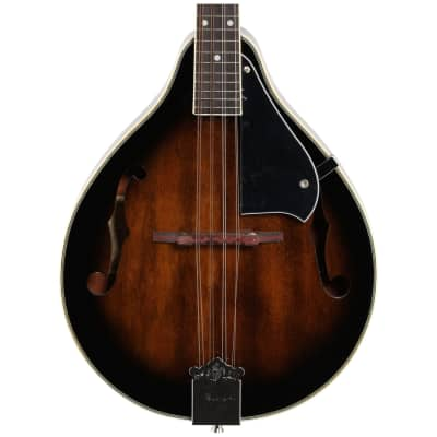 Ibanez M510EDVS A-Style Acoustic/Electric Mandolin Bundle