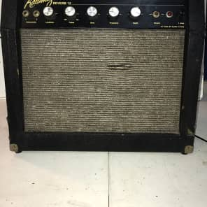 Kalamazoo Reverb 12 1960's Black with tan pattern mesh grill for sale