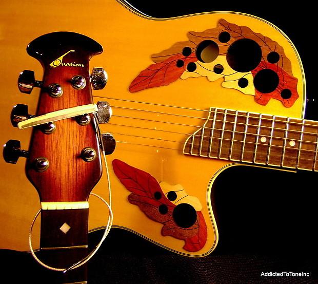 Up-trading starter acoustic. Ovation vs Seagull? : Guitar