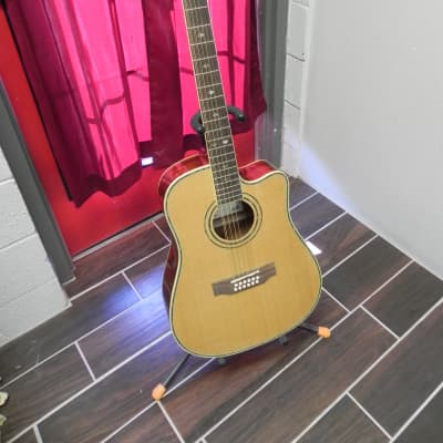 Copley CA5812 12-string Guitar for sale