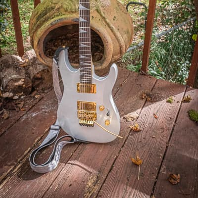 Schecter Style Floyd Rose Silver and Gold 2020 Silver and Gold for sale