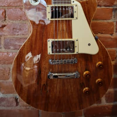 Agile Model 2000 Les Paul Spalted Set Neck for sale