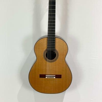 Dominique Delarue Concert Classical Guitar 2021 French Polish for sale