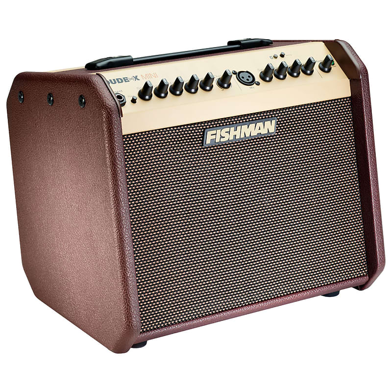 fishman pro lbt 500 loudbox mini with bluetooth acoustic reverb. Black Bedroom Furniture Sets. Home Design Ideas