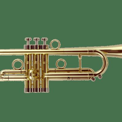 John Packer JP by Taylor Inspired Key of Bb Trumpet w/Pro Double Case, Mouthpiece &Valve Oil