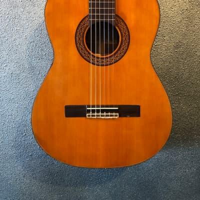 Cortez  C-80 Classical Acoustic 1975 for sale