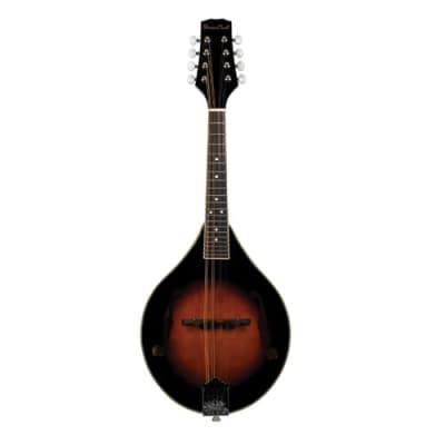 Beaver Creek Mandolin w/Bag BCMM201 for sale