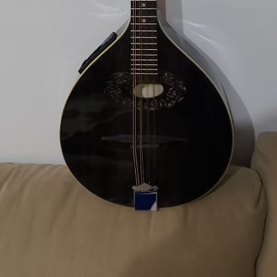 Electric Hora Octave Mandolin/Short Bouzouki 2020 New + Bag + Extra Set Of Chords for sale