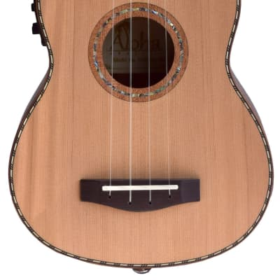 Aloha Solid Top Acoustic Electric Soprano Ukulele with Carrying Bag for sale