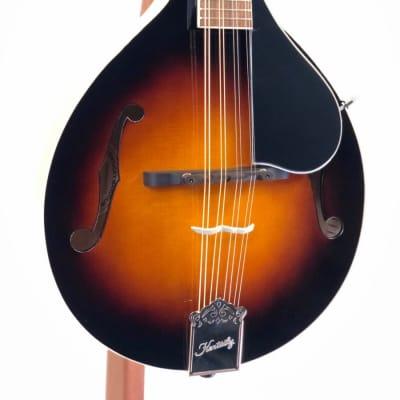 Kentucky KM-150 Mandolin w/Gig Bag & Pro-Setup for sale