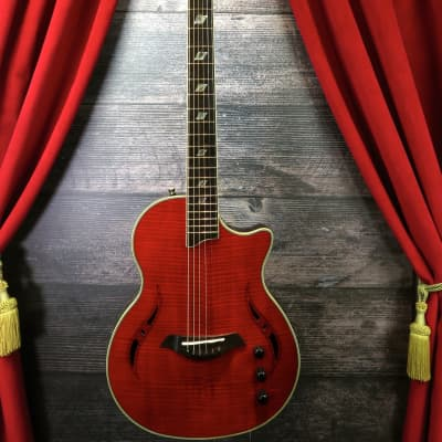 Giannini GIANNINI NASHLYN ACOUSTIC ELECTRIC GUITAR for sale