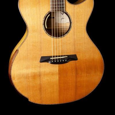 Maestro Singa w/ Western Red Cedar Top 2020 for sale