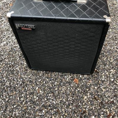 Polytone Mini Brute III 80s for sale