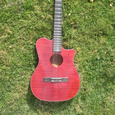Carvin CL450  Acoustic/Electric Classical Guitar with Factory Case for sale