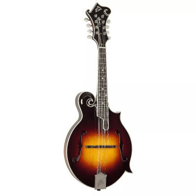 The Loar LM-500 Contemporary F-Style Mandolin