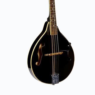 Glen Burton MDL-A1-BK A-Style Mandolin w/Gig Bag - Black for sale