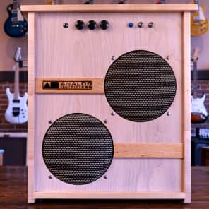Analog Outfitters ORGANic 15 2x10 Tube Guitar Combo Amp