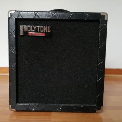 Polytone Baby Brute 1980 Black for sale