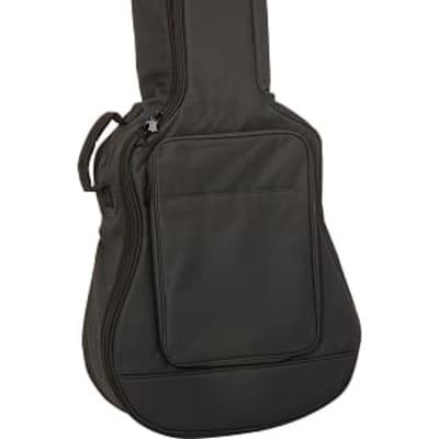 Levys folk/classical guitar bag for sale