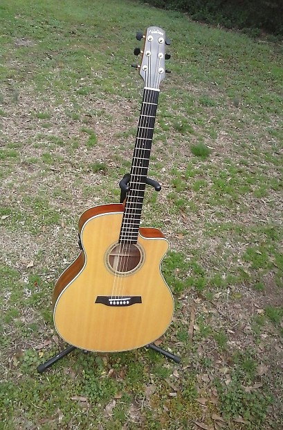 Walden G740CE Solid Wood Acoustic Electric B Band Pickup ...