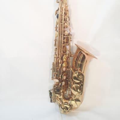 Musikwerks-Gold Lacquer Alto Saxophone-Intermediate Level-New-w/Shop Warranty!