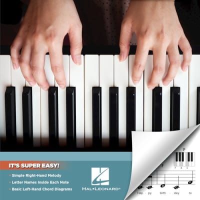 Hal Leonard Four Chord Songs Super Easy Songbook