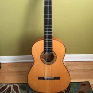 Castillo Acoustic Guitars For Sale In The Usa Guitar List