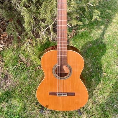 Ruben Flores Modelo 100 Cedar/Mahogany - Made in Spain for sale