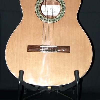 Paco Castillo original Spanish Guitars 201 for sale