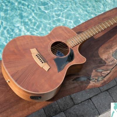 Cole Clark AN2EC-RDBL Angel 2 Redwood Top w/Blackwood Back and Sides - Handmade in Australia w OHSC for sale