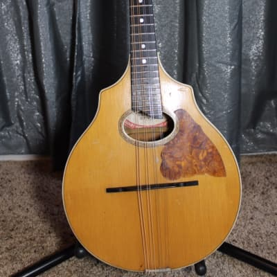 Vega Style 202 Cylinder Back Lute Mandolin  1910's Natural for sale