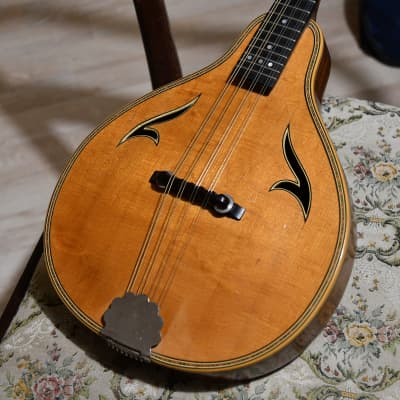 Vintage Cremona 545 Mastercrafted Mandolin (Alfred Brauer), 1950's for sale
