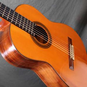 Daniel Friederich  1971 Spruce/ Brazilian concert guitar for sale