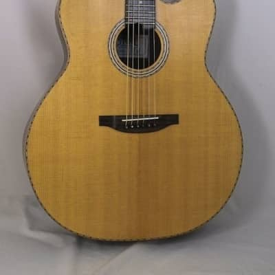 Stoll Ambition Jumbo Sitka / Palisander, Cutaway, LR Baggs Pickup for sale