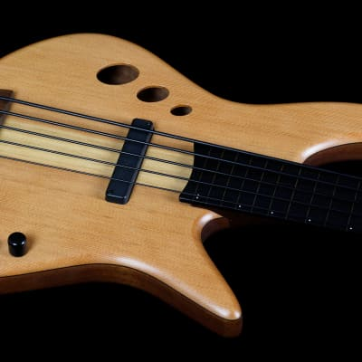 Stambaugh Resonance 5 string lined Fretless Natural for sale