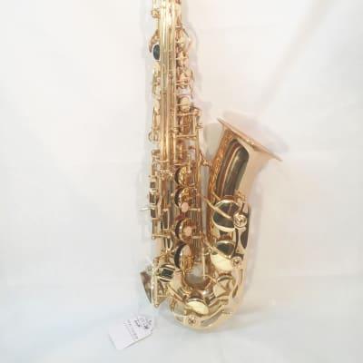 Musikwerks-Gold Lacquer Alto Saxophone-Semi Pro Level-High F#-New-Shop Warranty!