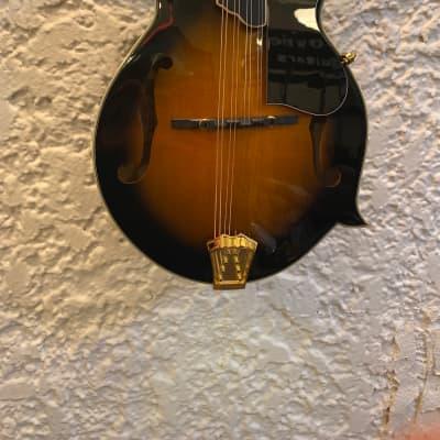 Gold Tone GM-70+ F-Style Mandolin