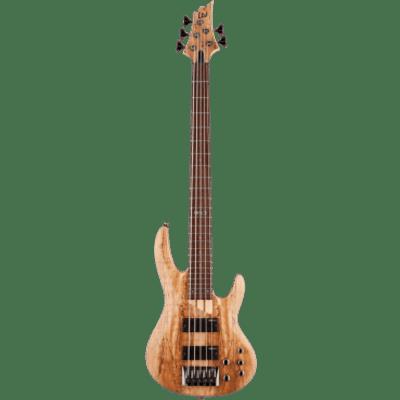 ESP LTD GES B205SMFL-NS Modele 200 - 5 cordes naturel satiné - Fretless for sale