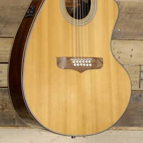 Giannini 12 String Acoustic Electric Guitar Natural Finish for sale