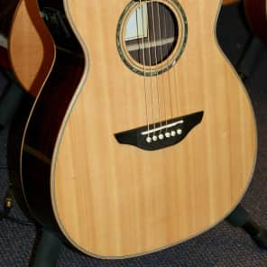 Fairclough Thyme OM Rosewood  Back & Sides Natural Gloss Acoustic Guitar With Built In Tuner for sale