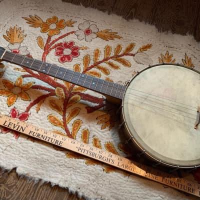 Vintage Sovereign  Banjo Oscar Schmidt / Regal for sale