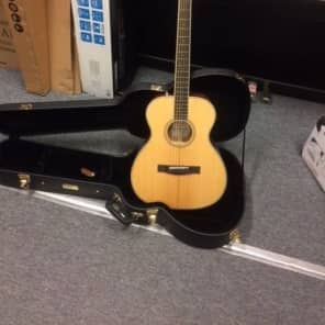 Fender Paramount PM-TE Standard Electro Travel Guitar in Natural Ex Display for sale