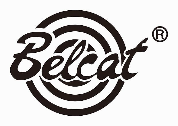 belcat tube 5 guitar amp combo
