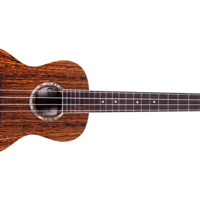 Cordoba 15CB Bocote Concert Ukulele for sale